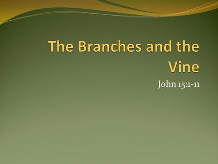 John 15:1-11. The Branch We Are to Be Dependent on the vine; without Him, we are nothing – John 1:1-4 A living branch – Rev. 3:1-3 A fruitful branch What.