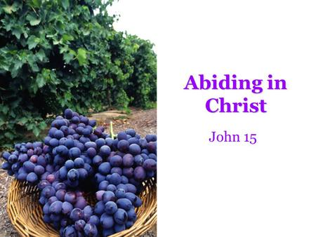 Abiding in Christ John 15. 1 I am the true vine, and My Father is the vinedresser. 2 Every branch in Me that does not bear fruit He takes away; and.