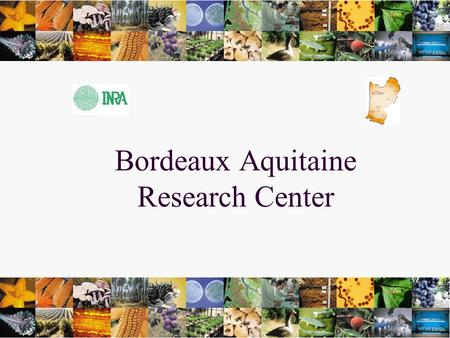 1 Bordeaux Aquitaine Research Center. INRA RESEARCH INSTITUTE 21 Research Centers INRA AQUITAINE.