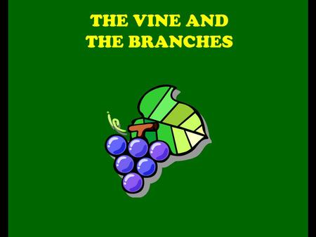 THE VINE AND THE BRANCHES. Technically, the gospel of John does not contain any parables. But this famous story resembles one in every way. It's actually.
