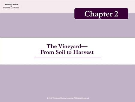 The Vineyard— From Soil to Harvest © 2007 Thomson Delmar Learning. All Rights Reserved. Chapter 2.