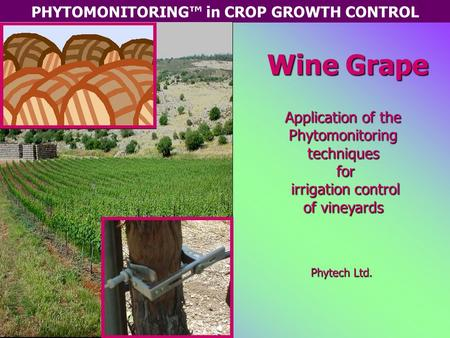 PHYTOMONITORING™ in CROP GROWTH CONTROL Wine Grape Application of the Phytomonitoring techniques for irrigation control of vineyards Phytech Ltd.