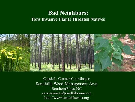 Cassie L. Conner, Coordinator Sandhills Weed Management Area Southern Pines, NC  Bad Neighbors: