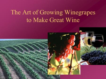 The Art of Growing Winegrapes to Make Great Wine.