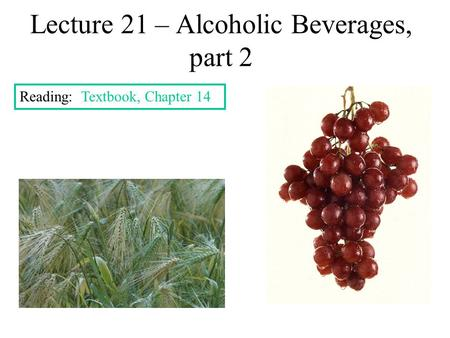 Lecture 21 – Alcoholic Beverages, part 2 Reading: Textbook, Chapter 14.