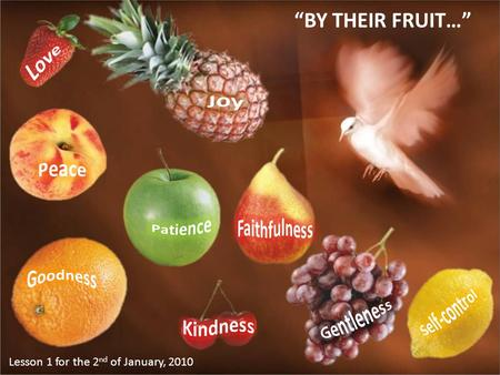 """BY THEIR FRUIT…"" Lesson 1 for the 2 nd of January, 2010."