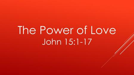 "The Power of Love John 15:1-17. 1 ""I am the true vine, and My Father is the vinedresser. 2 Every branch in Me that does not bear fruit He takes away;"