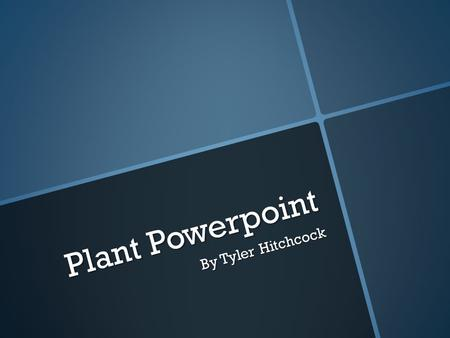 Plant Powerpoint By Tyler Hitchcock. Echinacea purpurea/purple coneflower Echinacea purpurea/purple coneflower  2-5 ft. stems and long-lasting, lavender.