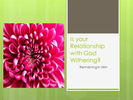 Is your Relationship with God Withering? Remaining in Him.