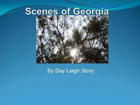 Scenes of Georgia By Day Leigh Story.