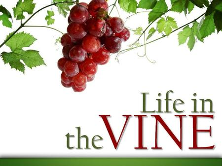 Abide in Me, and I in you. As the branch cannot bear fruit of itself, unless it abides in the vine, neither can you, unless you abide in Me. John 15:4.