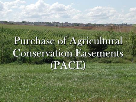 Why All The Talk About Purchase of Agricultural Conservation Easements (PACE)? New state program to support local purchase of permanent agricultural conservation.