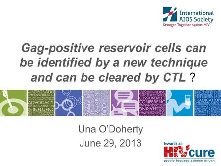 Gag-positive reservoir cells can be identified by a new technique and can be cleared by CTL ? Una O'Doherty June 29, 2013.