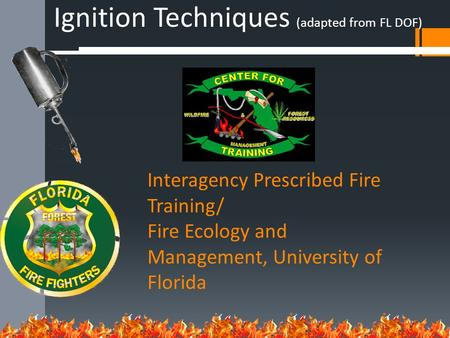 Interagency Prescribed Fire Training/ Fire Ecology and Management, University of Florida Ignition Techniques (adapted from FL DOF)
