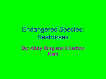 Endangered Species: Seahorses By: Abby King and Charlton Kam.