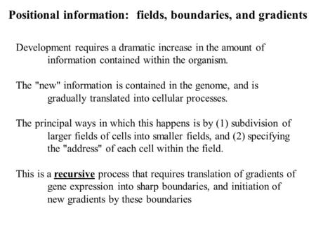 Positional information: fields, boundaries, and gradients Development requires a dramatic increase in the amount of information contained within the organism.