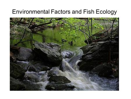Environmental Factors and Fish Ecology. Environmental factors affecting organisms and local assemblages Many factors High complexity Abiotic Large, long.