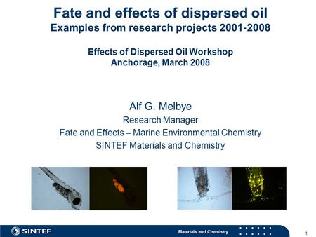 Materials and Chemistry 1 Fate and effects of dispersed oil Examples from research projects 2001-2008 Effects of Dispersed Oil Workshop Anchorage, March.