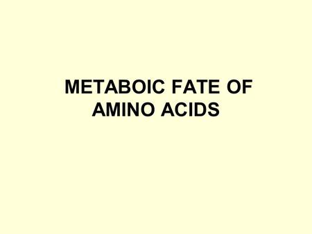 METABOIC FATE OF AMINO ACIDS. Intracellular proteases hydrolyze internal peptide bonds, of protein releasing peptides, which are then degraded to free.