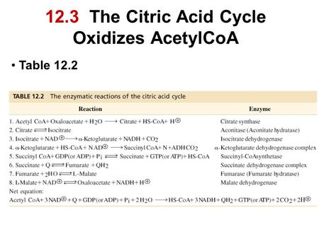 12.3 The Citric Acid Cycle Oxidizes AcetylCoA Table 12.2.