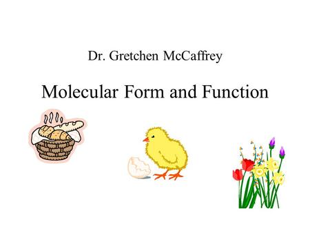 Dr. Gretchen McCaffrey Molecular Form and Function.