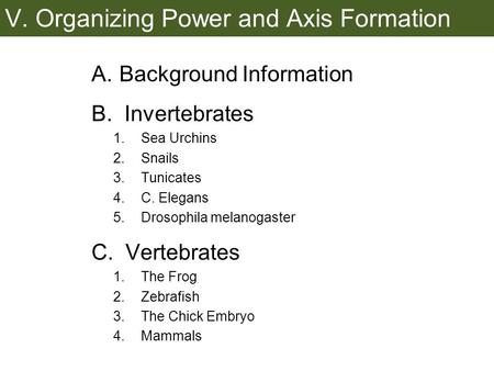 V. Organizing Power and Axis Formation