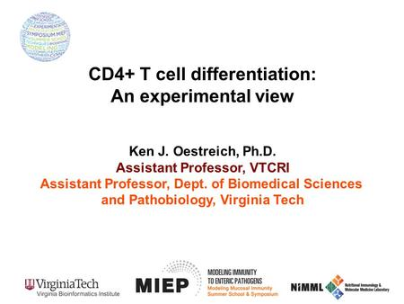Ken J. Oestreich, Ph.D. Assistant Professor, VTCRI Assistant Professor, Dept. of Biomedical Sciences and Pathobiology, Virginia Tech CD4+ T cell differentiation: