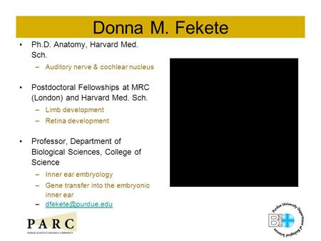 Donna M. Fekete Ph.D. Anatomy, Harvard Med. Sch. –Auditory nerve & cochlear nucleus Postdoctoral Fellowships at MRC (London) and Harvard Med. Sch. –Limb.