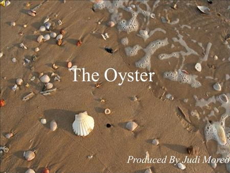 The Oyster Produced By Judi Moreo. There once was an oyster whose story I tell, That found some sand inside of his shell.