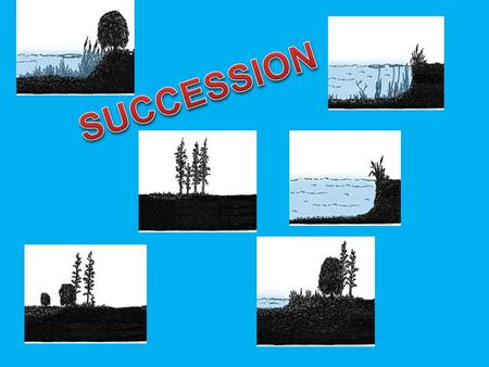 m%204/pond.htm  m%204/pond.htm Watch the short animation on succession by clicking.