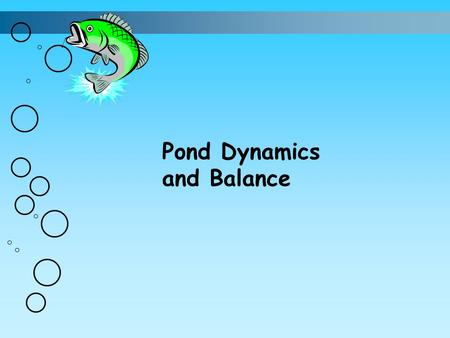 Pond Dynamics and Balance. Water Quality Factors 1. Dissolved oxygen 2. Alkalinity 3. Hardness 4. pH.