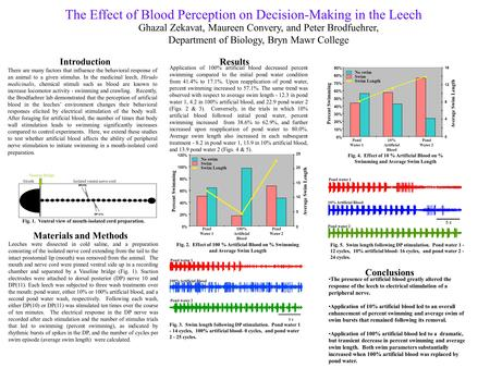 The Effect of Blood Perception on Decision-Making in the Leech Introduction There are many factors that influence the behavioral response of an animal.