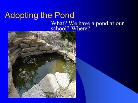 Adopting the Pond What? We have a pond at our school? Where?