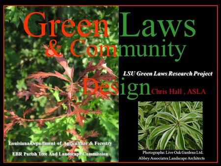 & Community Design LSU Green Laws Research Project Green Laws Louisiana Department of Agriculture & Forestry EBR Parish Tree And Landscape Commission Louisiana.