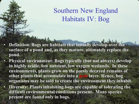 Southern New England Habitats IV: Bog Definition: Bogs are habitats that initially develop over the surface of a pond and, as they mature, ultimately.