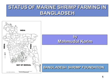 1 STATUS OF MARINE SHRIMP FARMING IN BANGLADSEH BANGLADESH SHRIMP FOUNDATION by Mahmudul Karim by Mahmudul Karim.
