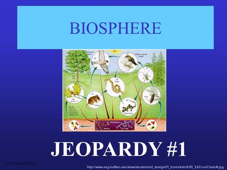 BIOSPHERE JEOPARDY #1 S2C06 Jeopardy Review