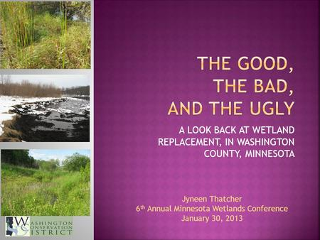 A LOOK BACK AT WETLAND REPLACEMENT, IN WASHINGTON COUNTY, MINNESOTA Jyneen Thatcher 6 th Annual Minnesota Wetlands Conference January 30, 2013.