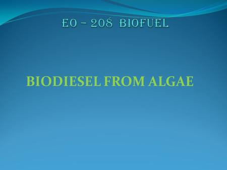 BIODIESEL FROM ALGAE. Alga – a photosynthetic organism of a group that lives mainly in water and that includes seaweeds.