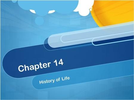 Chapter 14 History of Life. Biogenesis The principle of biogensis states that all living things come from other living things Before the 17 th century.