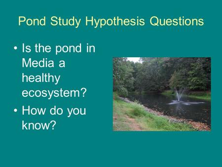 Pond Study Hypothesis Questions Is the pond in Media a healthy ecosystem? How do you know?