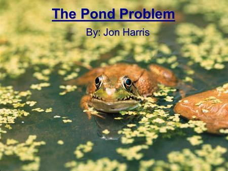 Introduction HELP!!! Mr. Harris has taken his class out to the local pond to talk about nature but has forgotten the names of all the animals he sees.