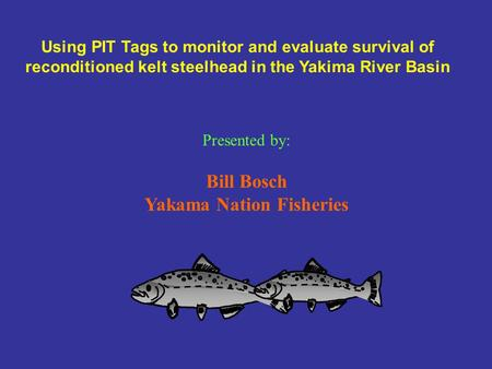 Using PIT Tags to monitor and evaluate survival of reconditioned kelt steelhead in the Yakima River Basin Presented by: Bill Bosch Yakama Nation Fisheries.