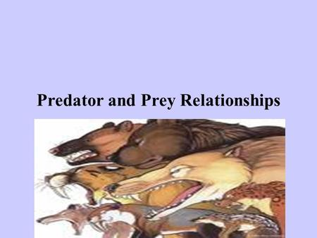 Predator and Prey Relationships. Definition of predator review: 1) We are also predators when we hunt, fish, or buy meat or vegetables from the grocery.