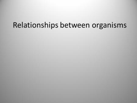 relationship between living organisms