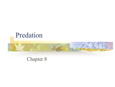 Predation Chapter 8. Predation Consumption of one organism (prey) by another (predator), in which the prey is alive when first attacked by the predator.