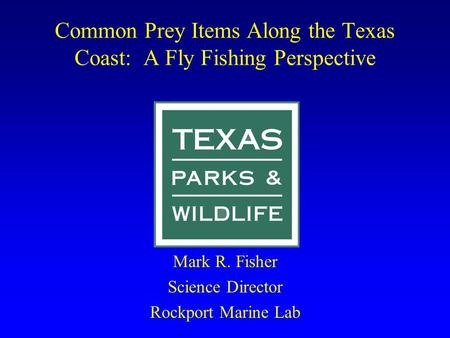 Common Prey Items Along the Texas Coast: A Fly Fishing Perspective