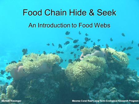 Food Chain Hide & Seek An Introduction to Food Webs Moorea Coral Reef Long Term Ecological Research ProgramMichele Kissinger.