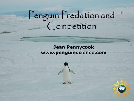 Jean Pennycook www.penguinscience.com Penguin Predation and Competition.