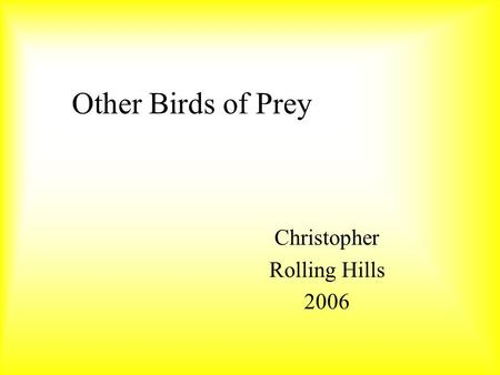 Other Birds of Prey Christopher Rolling Hills 2006.